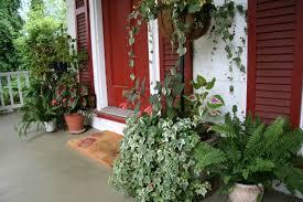 pre lit potted porch trees home design ideas