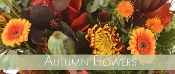 Florists Gullicks Florists Salisbury Home Flowers Throughout The Uk