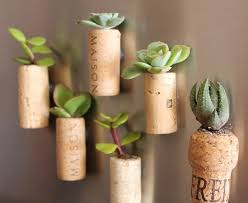 cool wine gifts cool diy gift idea for plant wine plants grow in fridge
