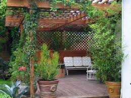 Pergola Designs For Patios by How To Build A Wood Pergola Hgtv