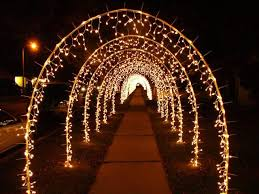 hold strands of lights to make a tunnel for