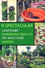 Plant Garden Ideas by You U0027ll Absolutely Love These 15 Container Gardening Ideas