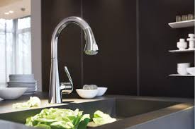 Grohe Ladylux Kitchen Faucet by Faucet Com 32298sd0 In Stainless Steel By Grohe