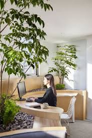 best 25 green office ideas on pinterest apartment plants
