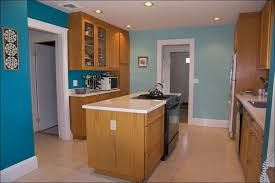 kitchen cabinet colors grey paint honey oak popular kitchen