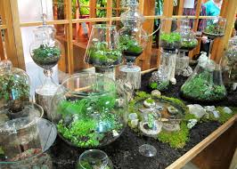 25 wonderful mini indoor gardening ideas indoor garden ideas