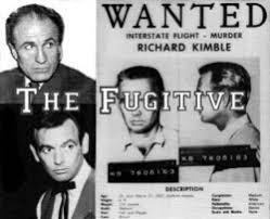 Seeking Tv Series Cast The Fugitive Tv Series