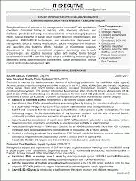 Technology Manager Resume How To Write Good Executive Resume Samples It Peppapp