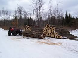 skidding out cabin logs honda foreman forums rubicon rincon