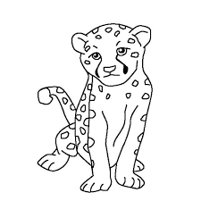 cheetah print coloring pages images cheetah coloring pages