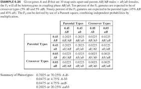 dihybrid cross punnett square worksheet free worksheets library  with punnett squares from comprareninternetnet