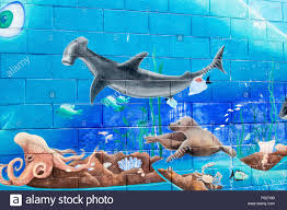 Wall Murals Australia Mural On A School Wall In Australia Showing Sea Creatures In The