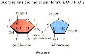 Table Sugar Formula Glucose Motm April 2007 Html Only Version