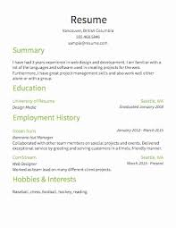 exles of simple resumes resume template exles beautiful resume outline exles 17