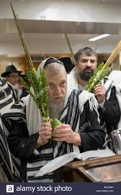 prayers for sukkot a religious praying on sukkot with and esrog and lulav