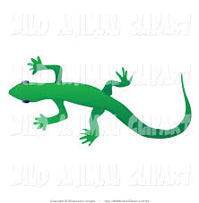 clip art of a solid green gecko lizard crawling over a white
