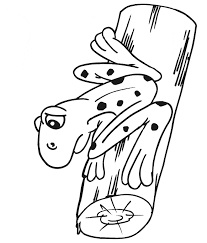 Frog Coloring Free Animal Coloring Pages Sheets Frog