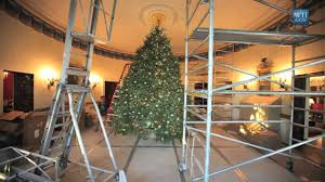 time lapse of the white house christmas tree new year decoration