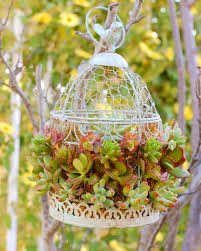 Bird Cage Decoration How To Decorate A Birdcage Home Decor Perfect Find This Pin And
