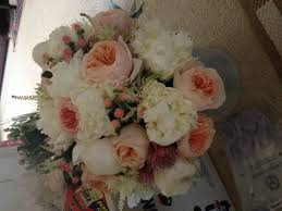 carnations in bulk if you used sam s club costco collections or bulk flowers