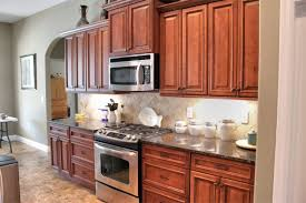 Cabinets With Knobs Amazing Kitchen Cabinet Knobs Home Design Ideas - Kitchen cabinets knobs