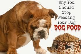alpha raw dog food barrie inn
