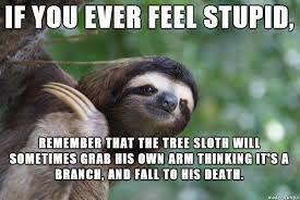 Asthma Sloth Meme - depression i m not quirky i m crazy