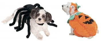 ruff draft adorable pet costumes for your puppies u0026 kittens