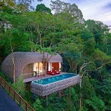 25 beautiful tree house resort ideas on jungle house