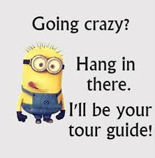 going crazy minions pinterest humor funny quotes and funny
