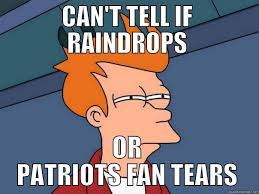 Patriots Fan Meme - patriots fan tears quickmeme