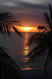84 best beaches u0026 breaks images on pinterest naples florida