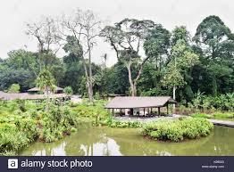 Singapore Botanic Gardens Location Singapore Botanic Gardens Wetlands A Shelter Is Built Among The