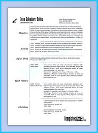 Product Development Resume Sample by Artist Resume Template That Look Professional