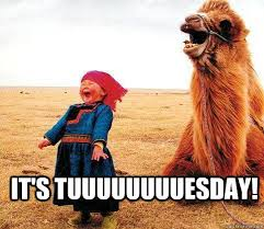 Tuesday Funny Memes - its tuesday meme tuesday best of the funny meme