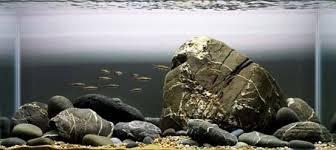 Substrate Aquascape Aquascape Designs