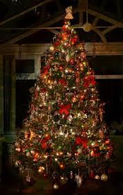macy u0027s holiday parade u0026 star tree lighting a million cool things