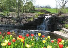 Overland Park Botanical Garden Overland Park Botanical Gardens Overland Park Kansas