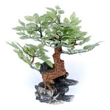 pen plax rr970 ornament bonsai tree 10 aquarium