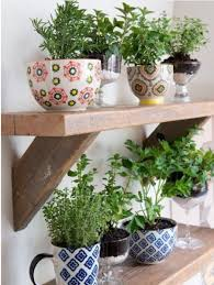 inside herb garden ideas for styling your home with indoor herb gardens