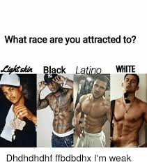 Latino Memes - what race are you attracted to black latino white dhdhdhdhf