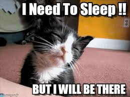 Meme Sleepy - i need to sleep sleepy cat meme on memegen