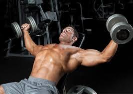mechanical advantage drop sets for chest muscle u0026 performance
