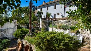 vineyards and olive farms for sale in andalusia