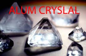 where can i find alum alum growing incubator arduino based temperature
