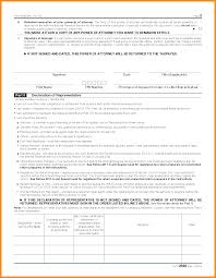 Form 2848 Power Of Attorney And Declaration Of Representative by 10 Irs Form Power Of Attorney Action Plan Template