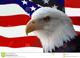 Eagles Flag American Eagle Flag Stock Photos Download 711 Images