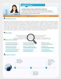 Visual Resume Samples by Fresh Essays Cv Sample For Uae