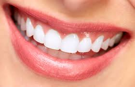 soft touch dental call now 718 997 8400 bella normatov dds