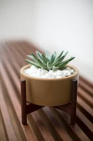 Desk Plant 418 Best Case Study Ceramics Images On Pinterest Case Study